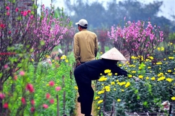 THE REASONS WHY YOU SHOULD TRAVEL TO HANOI IN SPRING