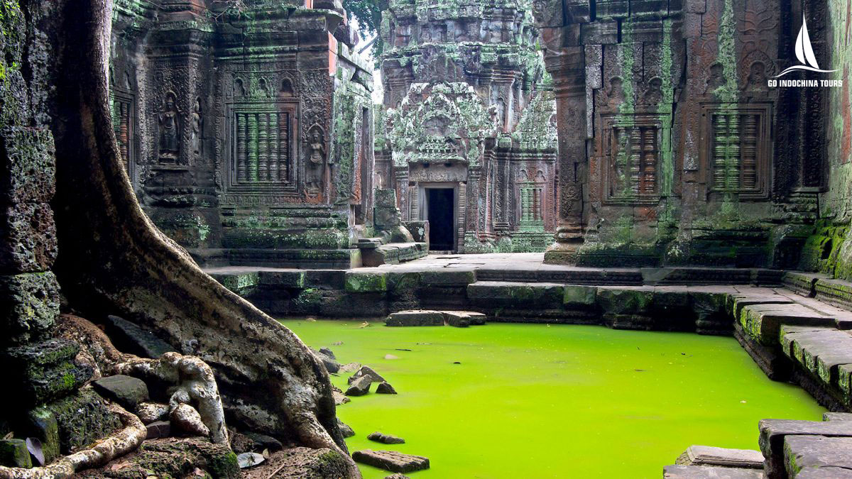 Visit Ta Prohm temple in cambodia