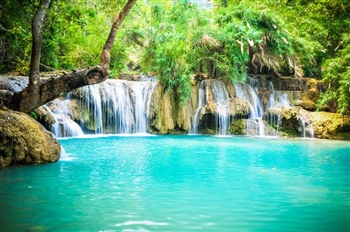 Visit LUANG PRABANG TO KHOUANGSI WATER FALL