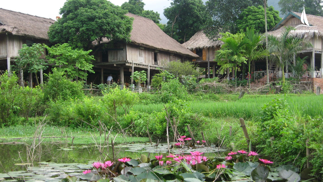 Visit Thai Village in Hoa Binh