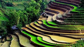 Vietnam Trekking and Hill trible Tours