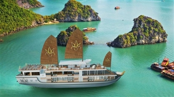 BEST HALONG BAY TOUR ON ORCHID CRUISE