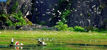 NINH BINH TO VAN LONG NATURAL RESERVE